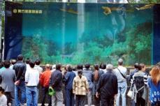 حوض أسماك في مركز تجاري بمدينة شنغهاي