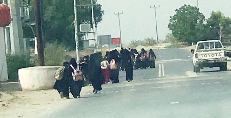 بالصور.. طالبات يقطعن عدة كيلومترات على الأقدام بسبب تعطل الحافلة المتكرر