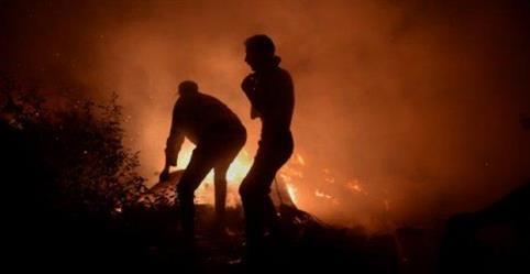 الحرائق تقتل نحو 30 شخصا في البرتغال وإسبانيا