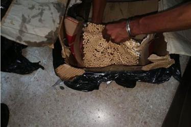 """بالفيديو والصور.. """"مكافحة المخدرات"""" الأردنية تحبط محاولة تهريب 225 ألف حبة """"كبتاجون"""" إلى المملكة"""